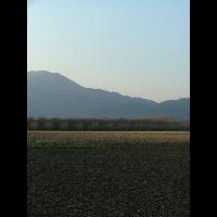 TULLINS 01 27-02-2009.jpg - image/jpeg
