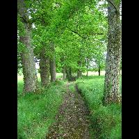 CONQUES-MOISSAC_03_13-05-2008.jpg - image/jpeg
